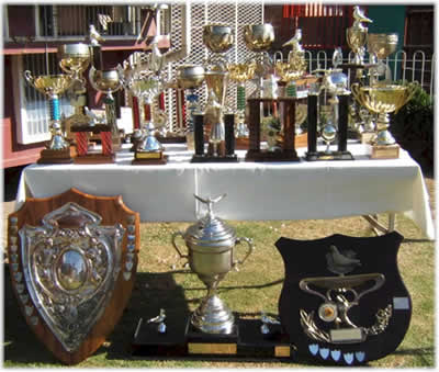 Champion Pigeon Racing Fancier Chris Smith Trophies